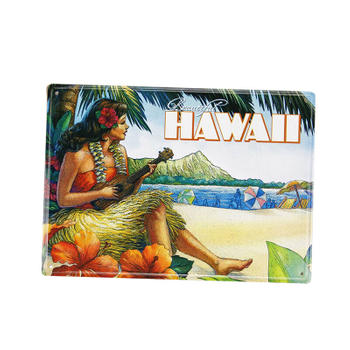 Hawaii Travelling Souvenir Metal Post Card with Paper Written Board