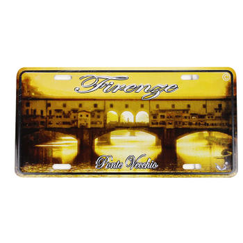 Vintage Bridge Front Vehicle License Plate